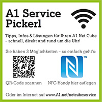 A1 Service Pickerl Net Cube