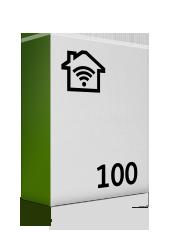 100 Mbit/s