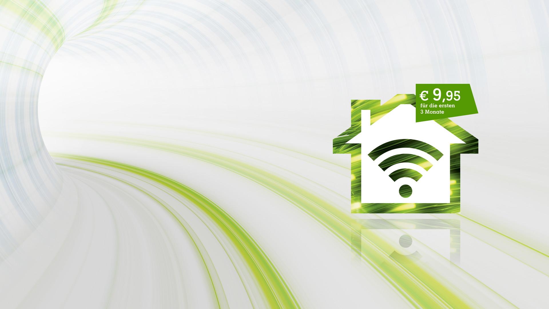 Festnetz-Internet